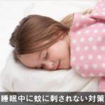 夜寝ている時に蚊に刺されない予防対策!簡単な5つの方法!