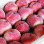 美味しい桃の選び方は?食べ方は?おすすめの保存方法はコレ!